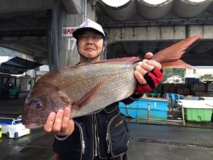 中津の北山さん、60cm真鯛GET