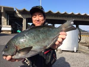竹田の江藤さん、43cmクロGET