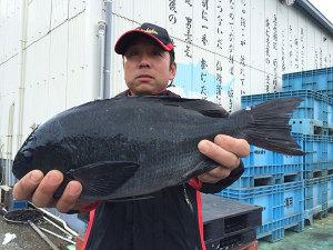 北九州の中本さん、44cmクロGET