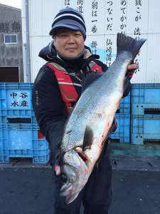 北九州の吉田さん、70cmスズキGET