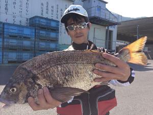 豊前の川上さん、55cmチヌGET