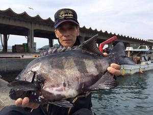 大分の伊東さん、55cm石鯛GET