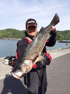 北九州の吉田さん、80cmスズキGET
