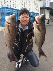 北九州の在川さんの良型イサキの一部