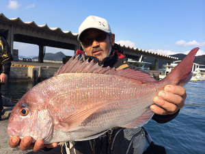 北九州の前田さん、56cm真鯛GET
