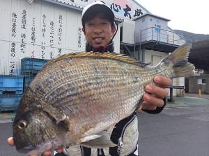 北九州の柴田さん、52cmヘダイGET