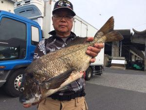 北九州の広吉さん、53cmチヌGET