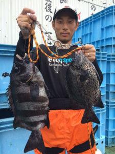 中津の小畑さん、49cm石鯛、良型ガキGET