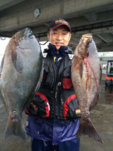 北九州の伊井さん、43cmクロ、良型イサキGET