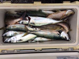 北九州の広吉さん、夜釣りを楽しんだ
