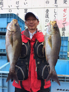 北九州の加藤さん、良型イサキGET