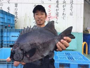 北九州の柴田さん、石鯛GET