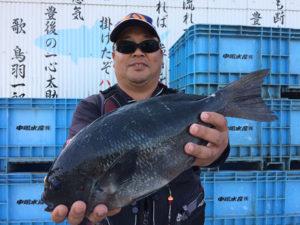 佐伯市の後藤さん、43cmクロGET。職場の釣り大会で優勝した。
