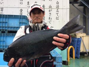 豊前の藤富さん、46cmクロGET