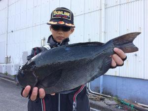 福岡の中1の山本君.44cmクロGET