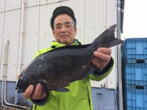 北九州の石井さん、43cmクロGET