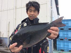 北九州の富田さん、良型クロGET